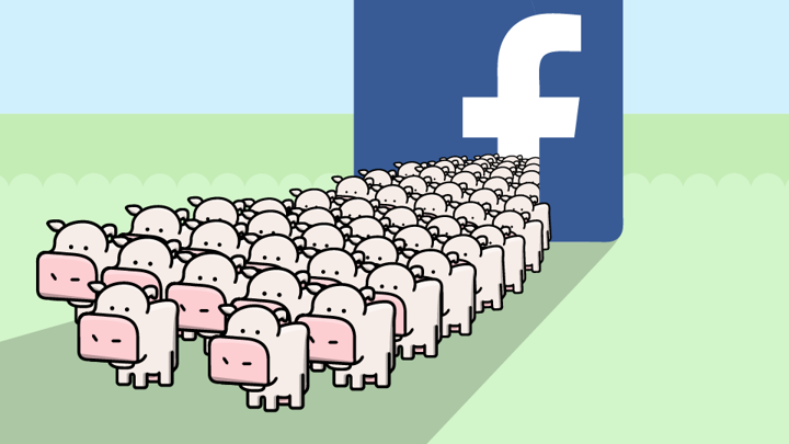 My Cow Game Extracted Your Facebook Data - The Atlantic
