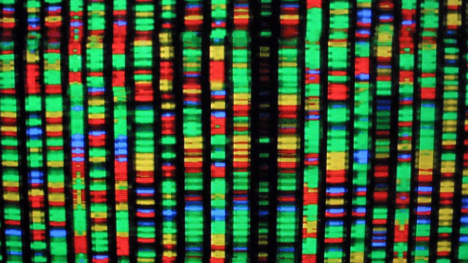 Vertical lines with colored bands representing the four nucleotide bases of DNA