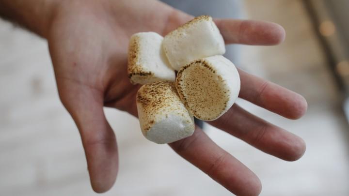 marshmallow test adults