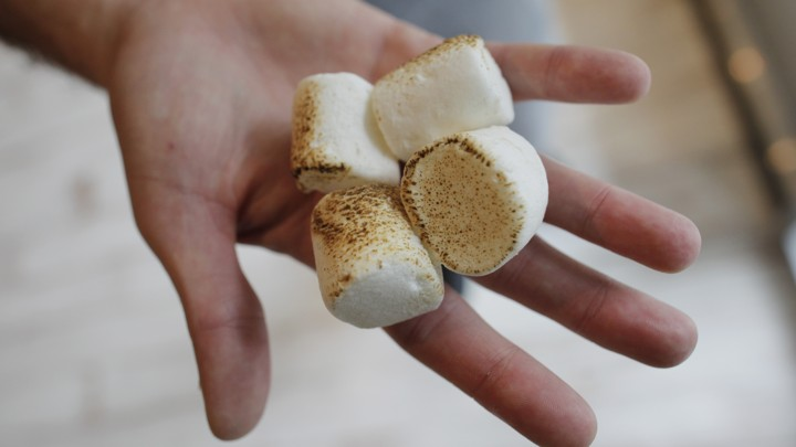 Building Modern Marshmallow Test New >> What The Marshmallow Test Really Teaches About Self Control The