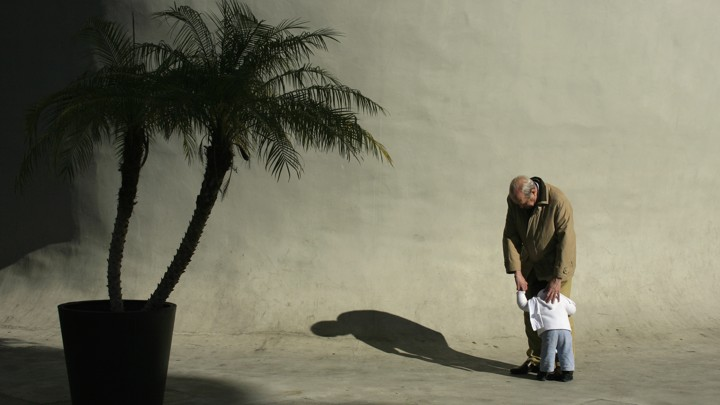 A toddler hugs the legs of a man next to a palm tree outside