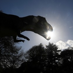 The silhouette of a dinosaur