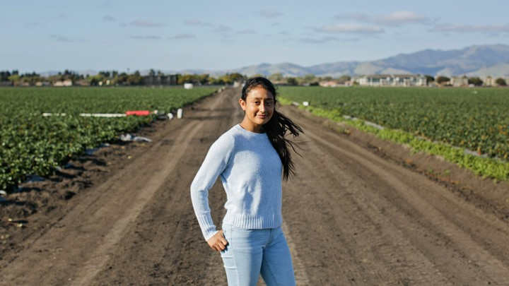A young girl wearing a blue sweater and jeans stands on a dirt path in a field
