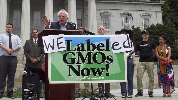 "Bernie Sanders behind sign that says ""We Labeled GMOs Now!"""