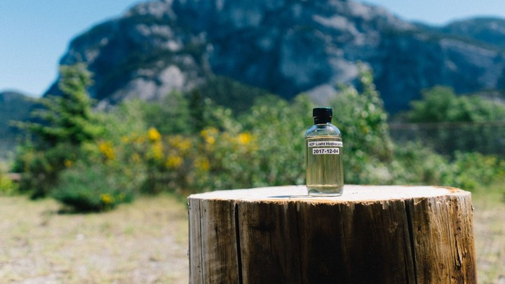 A small bottle of yellowish liquid on a tree stump