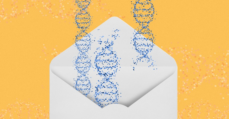 The DNA Depot That Has Sent CRISPR to 62 Countries