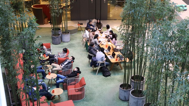 Workers at an open office with bamboo