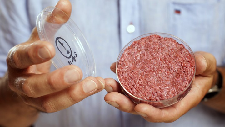 Hamburger in petri dish