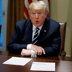 Donald Trump speaks about his summit meeting with Vladimir Putin