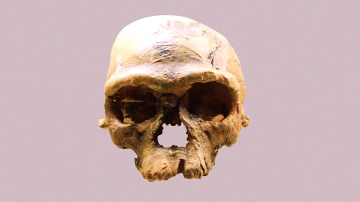 An ancient human skull from Jebel Irhoud