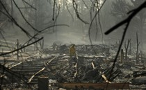 A firefighter stands in the middle of a burnt forest