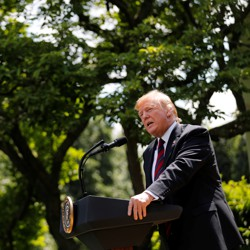 Donald Trump spoke about his administration's immigration proposals in the Rose Garden on May 16, 2019.