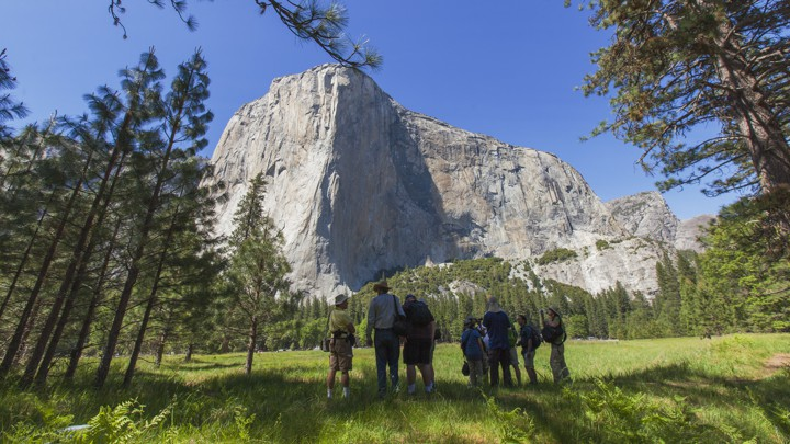 Free Solo': Alex Honnold's Climb Is Not a Life Lesson - The