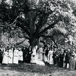 A wedding at the Bridegroom's Oak, 1927