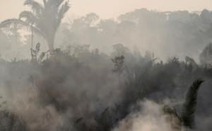 Smoke billows during a fire in an area of the Amazon rainforest near Humaita, Amazonas