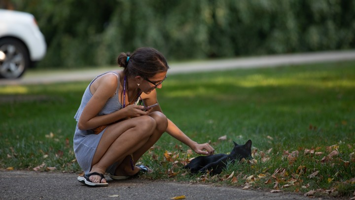Cat Takes Over College Campus
