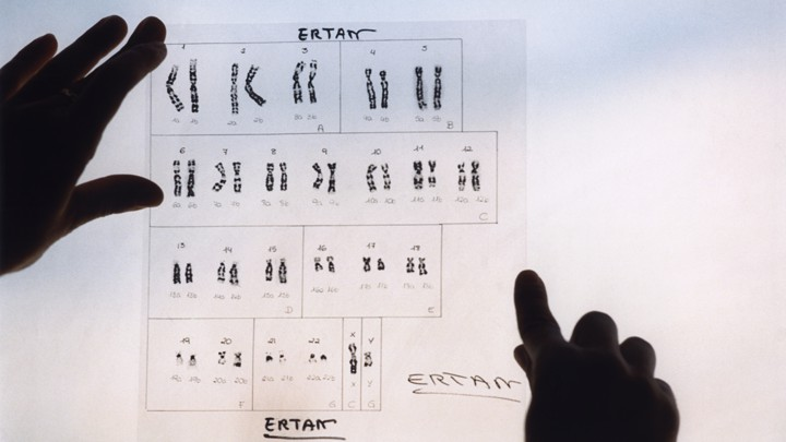 Images of the 23 pairs of human chromosomes