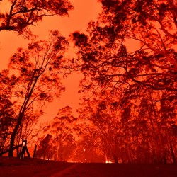 The red sky in Australia, a result of the wildfires.