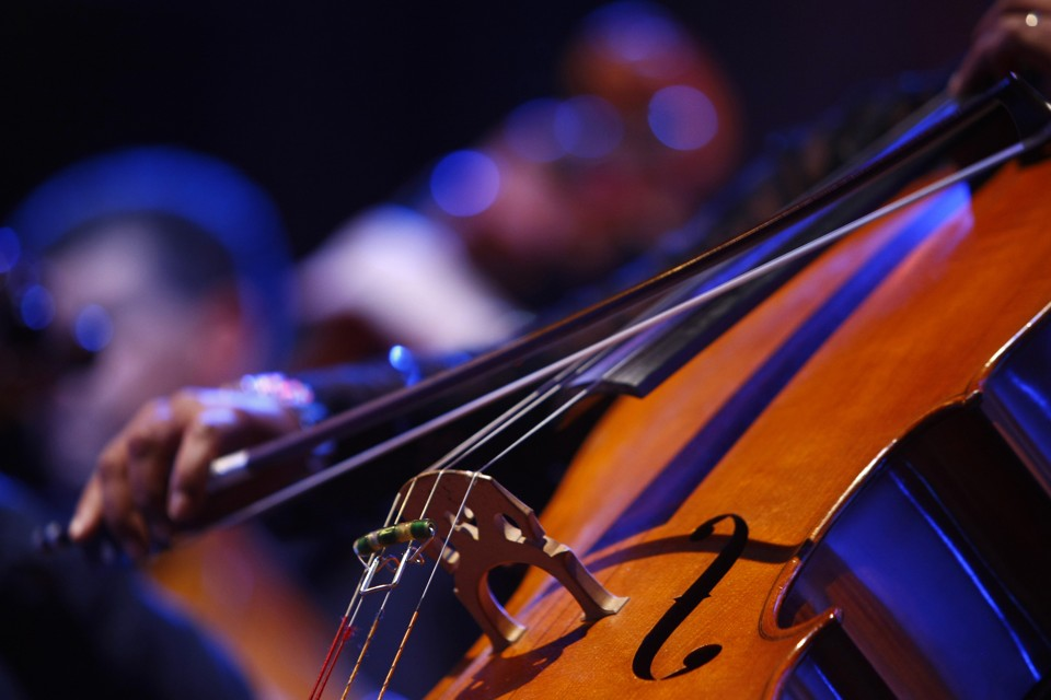 Poem of the Week: 'The Cellist' by Galway Kinnell