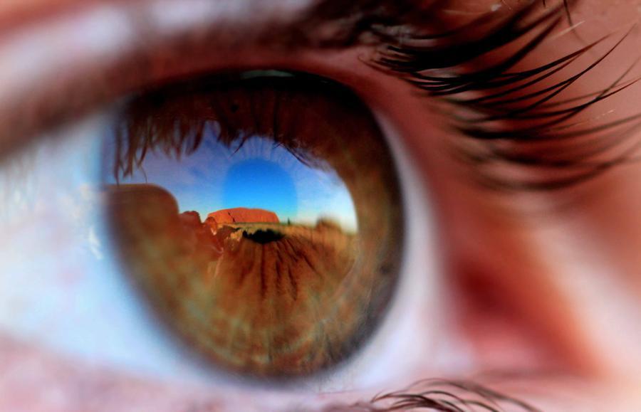 Concurso de fotografia national geographic 2011 4
