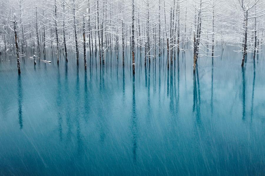 Concurso de fotografia national geographic 2011 63