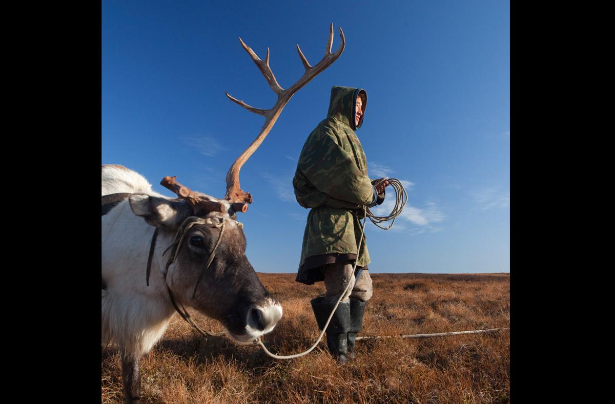 Top 5 myths about the life of reindeer herders in the Yamal tundra