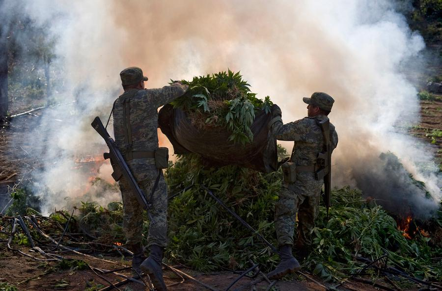 Mexico drug war photo essay
