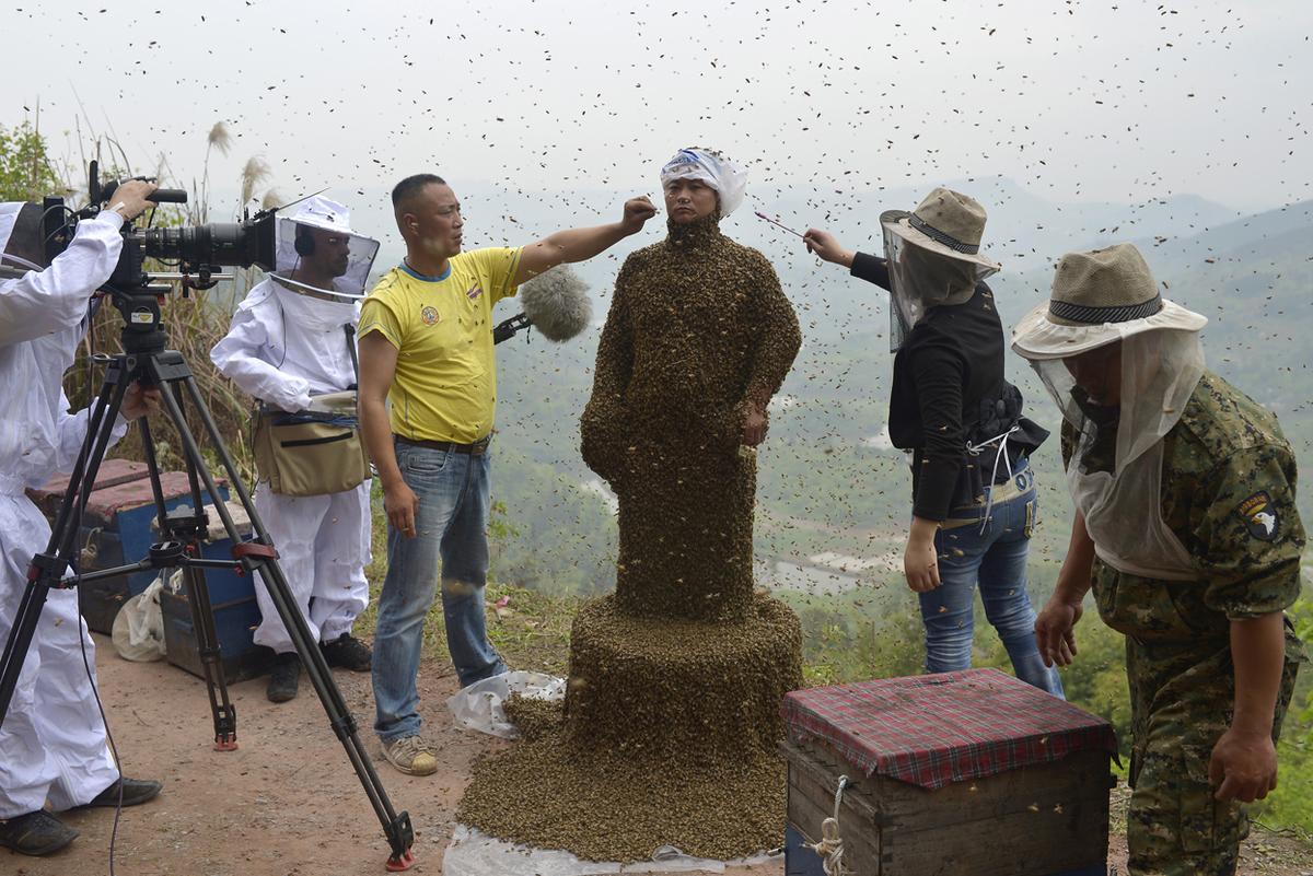 včelí muž
