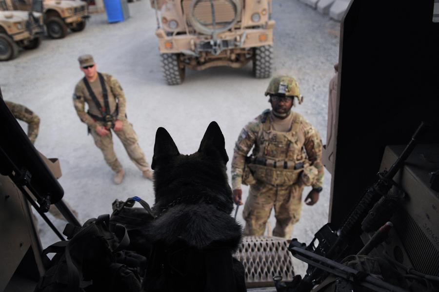 Afghanistan: Dogs of War - The Atlantic