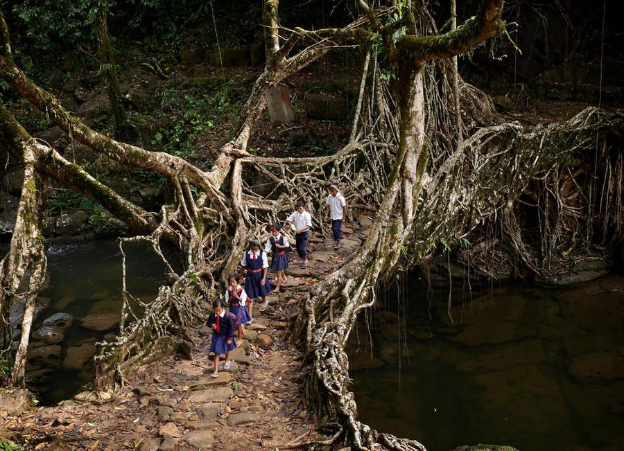 meghalaya the wettest place on earth the atlantic