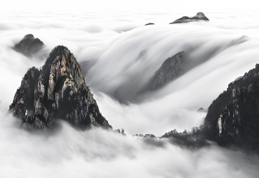 National Geographic Nature Photographer Of The Year Contest Part Ii