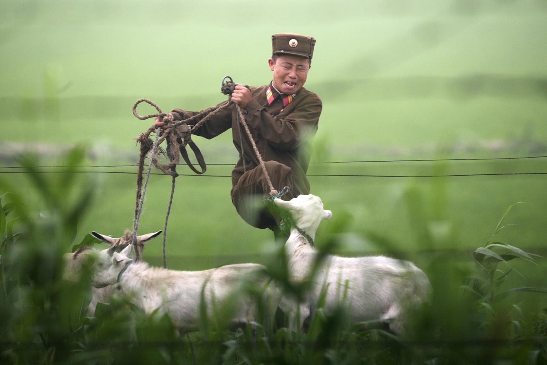 朝鲜边境见闻 - wuwei1101 - 西花社