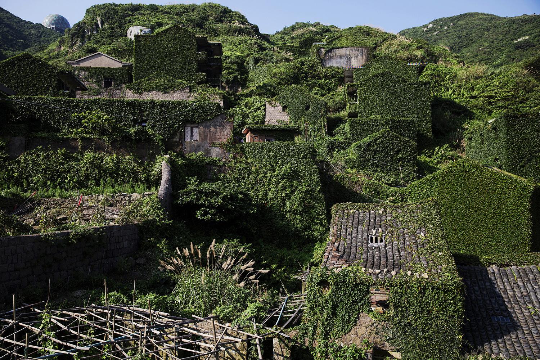 如果人类从地球上消失会是什么景象? - wuwei1101 - 西花社