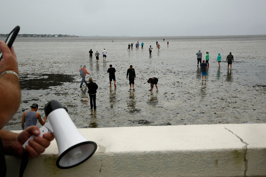 Residents Inspect The Extreme Receding Water In Tampa Bay Ahead Of Hurricane Irma On September 10 2017 Florida