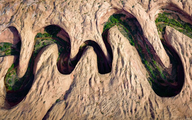 David Swindler  2017 National Geographic Nature Photographer of the Year