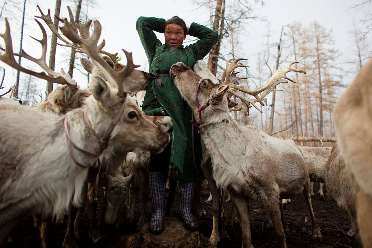 A Changing Way of Life for Mongolia's Dukha Reindeer Herders (23 photos)