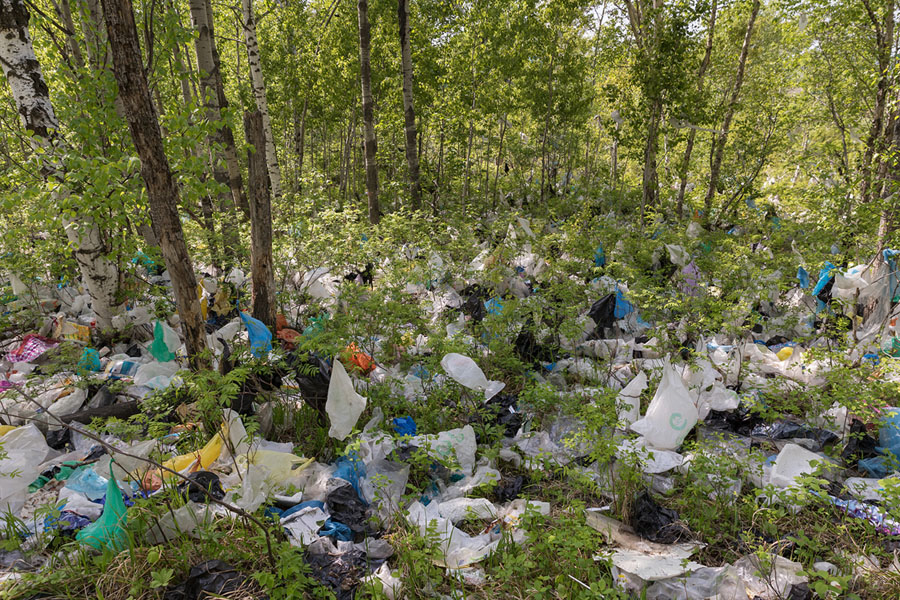 """World Environment Day 2018: """"Beat Plastic Pollution"""" - The"""
