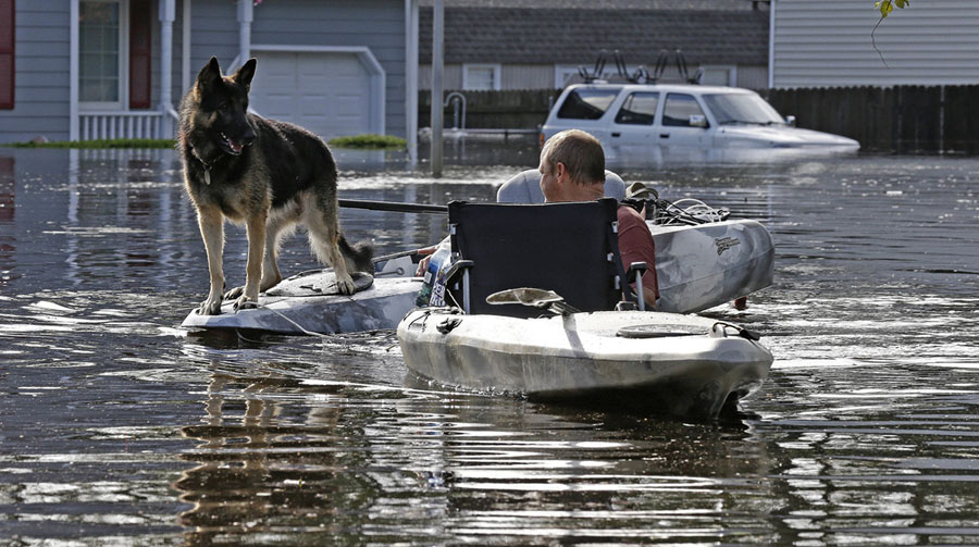 A Man Tries To Get His Dog Out Of A Flooded Neighborhood In Lumberton North Carolina On September 17 2018