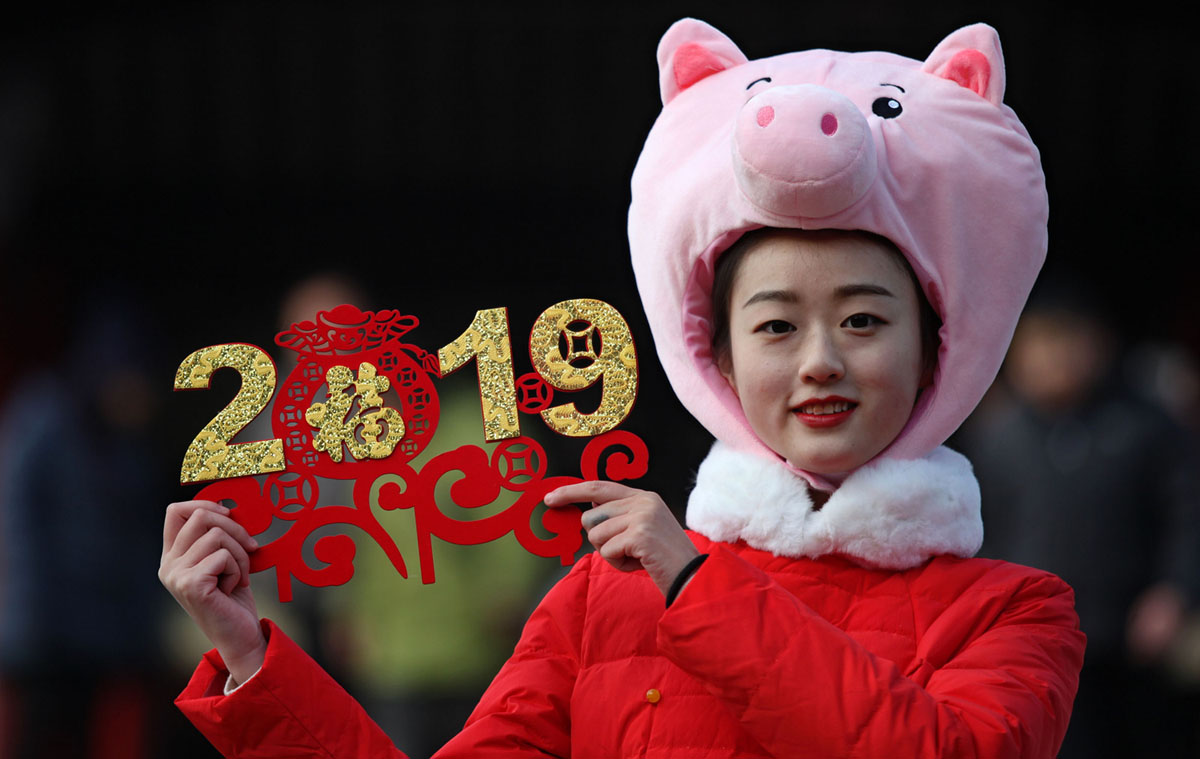 Chinese Lunar New Year 2019 (28 photos)