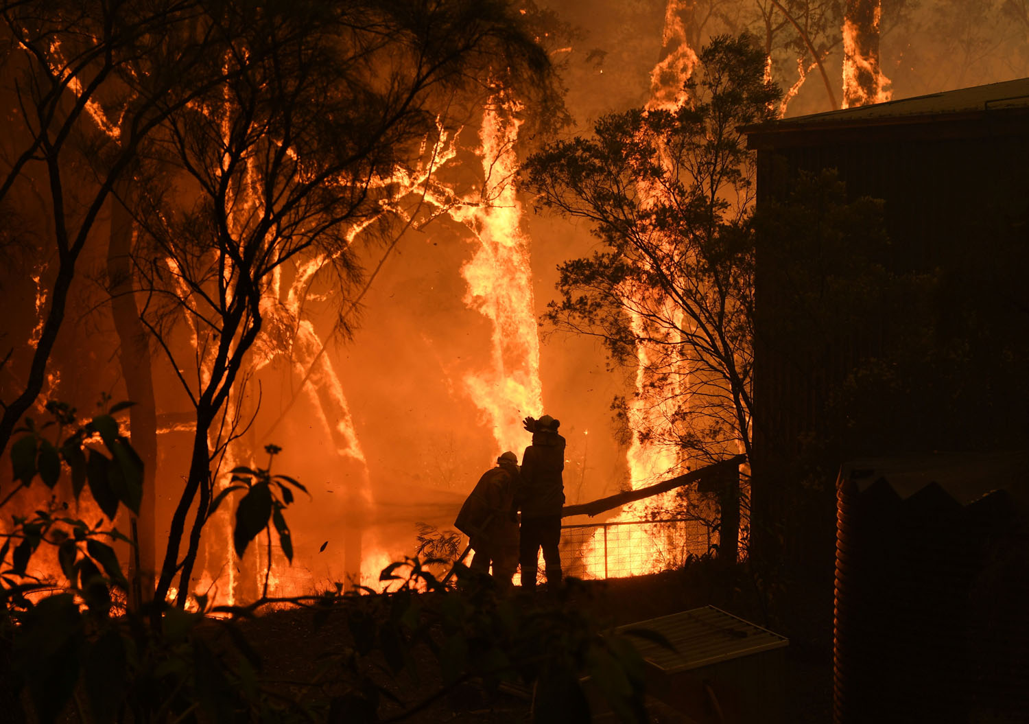 Photos Of Australia S Catastrophic Bushfires The Atlantic