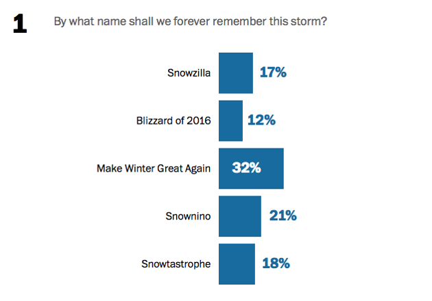 A bar chart showing the results of the name-the-2016-blizzard poll. Blizzard of 2016 is in last place. Snowtastrophe and Snowzilla are tied at 17 and 18 percent, respectively. Snownino is in second with 21 percent. Make Winter Great Again leads the poll with 32 percent of all votes cast.