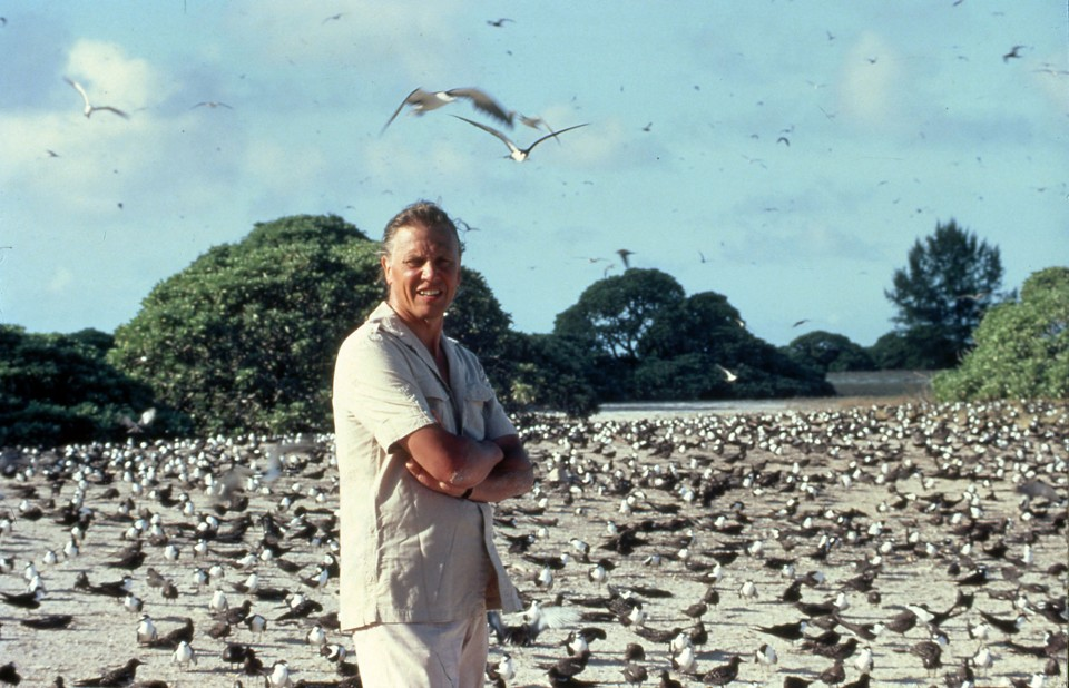 Every Episode of David Attenborough's Life Series, Ranked