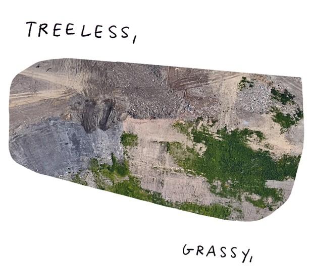 Treeless, grassy,