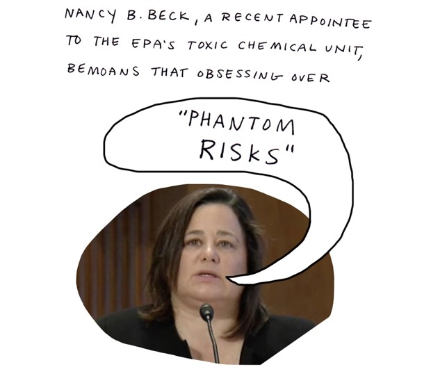 "Nancy B. Peck, a recent appointee to the EPA's toxic chemical unit, bemoans that obsessing over ""phantom risks"""