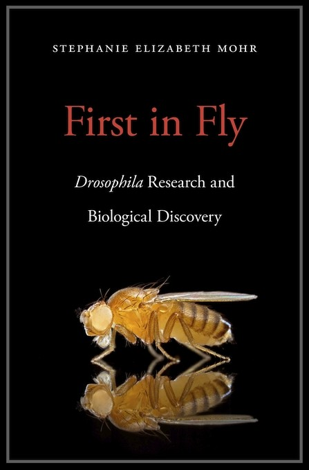 Consider the Fruit Fly | News Site