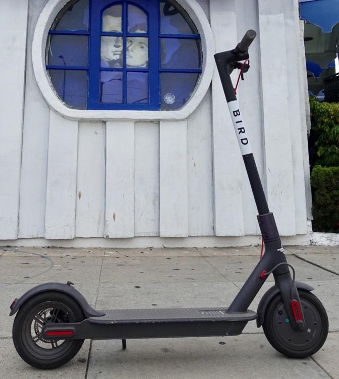 A Bird electric scooter in Venice Beach, California.