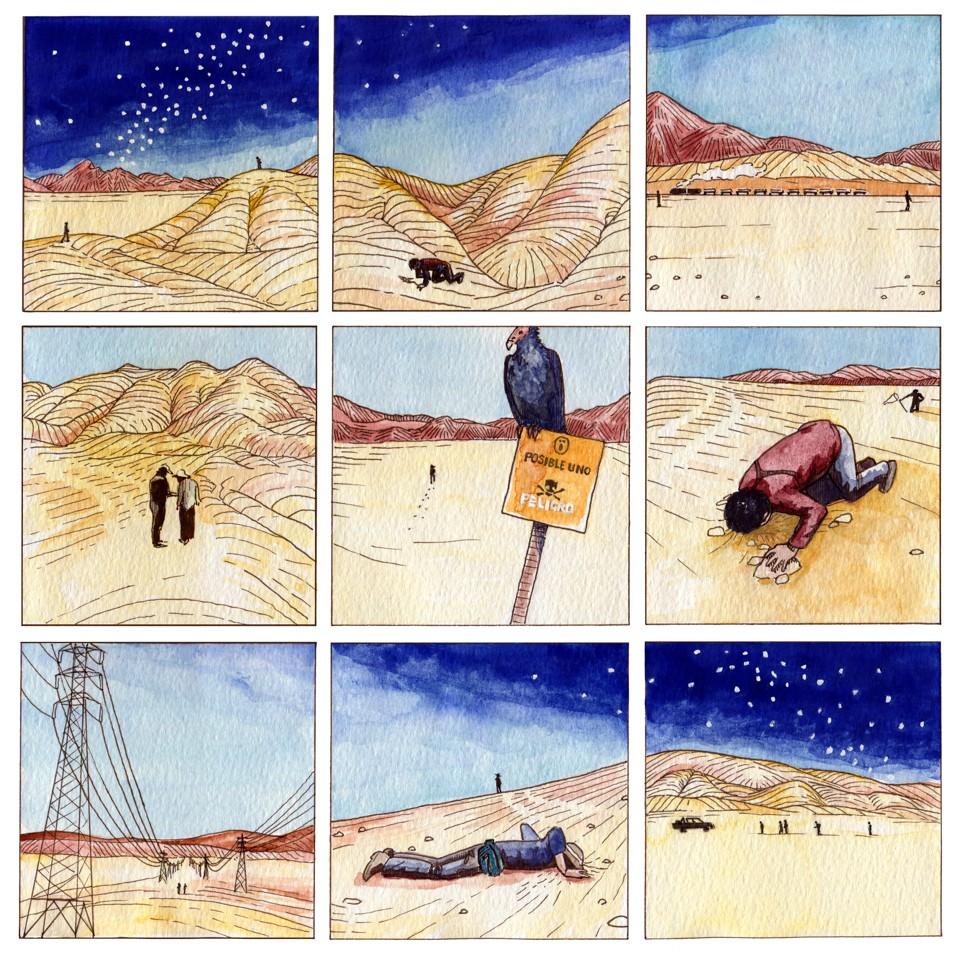 The Storm Petrel's Secret Nests in the Atacama Desert - The Atlantic