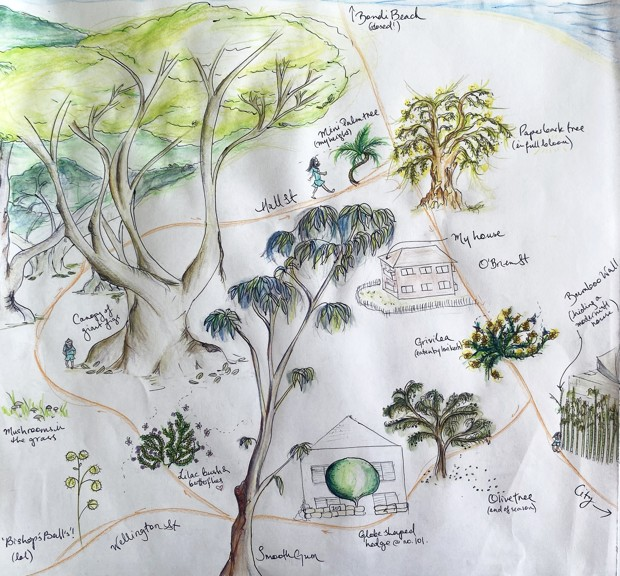 A colored pencil sketch of diverse trees and plants in Australian neighborhood