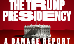 The Trump Presidency: A Damage Report