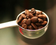 Coffee's Mysterious Origins